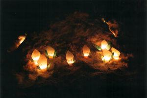 観光協会長賞:尾瀬の水芭蕉 火付け組